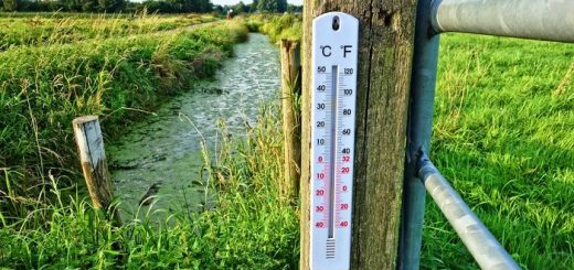 Contrairement aux craintes, le changement climatique n'a pas entrainé une hausse des morts associés à la chaleur en Espagne.