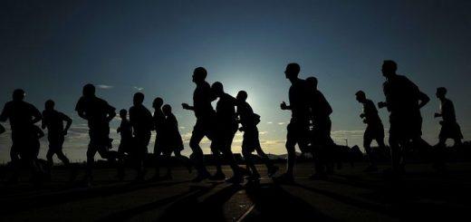 On estime que les êtres humains sont les meilleurs coureurs à longue distance du monde animal. Et désormais, une étude suggère que la perte d'un seul gène, CMAH, serait responsable de cette capacité.