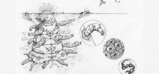 Un octomite ou un extra-terrestre hypothétique produit par sélection naturelle - Crédit : Helen Cooper de l'Université de Cambridge