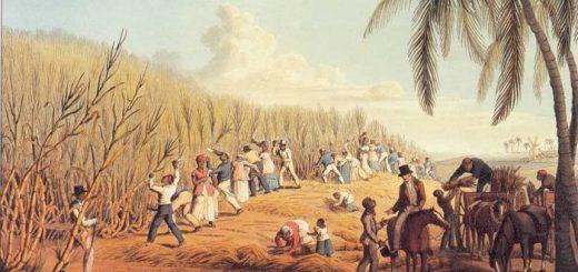 On imagine souvent l'esclavage comme un système simpliste et dichotomique. Mais quand on regarde les réalités de l'esclavage aux Caraibes, on se rend compte d'un système aussi complexe que cruel.