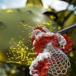 Un gène (rouge et blanc) lié à un nanotube de carbone peut facilement se glisser dans les cellules végétales, où il est exprimé comme s'il s'agissait du gène de la cellule. Dans ce cas, l'insertion du gène de la protéine fluorescente verte fait briller les feuilles en vert. Le nanotube a un diamètre de 1 nanomètre et une longueur de plusieurs centaines de nanomètres - Crédit : UC Berkeley graphic by Ella Marushchenko