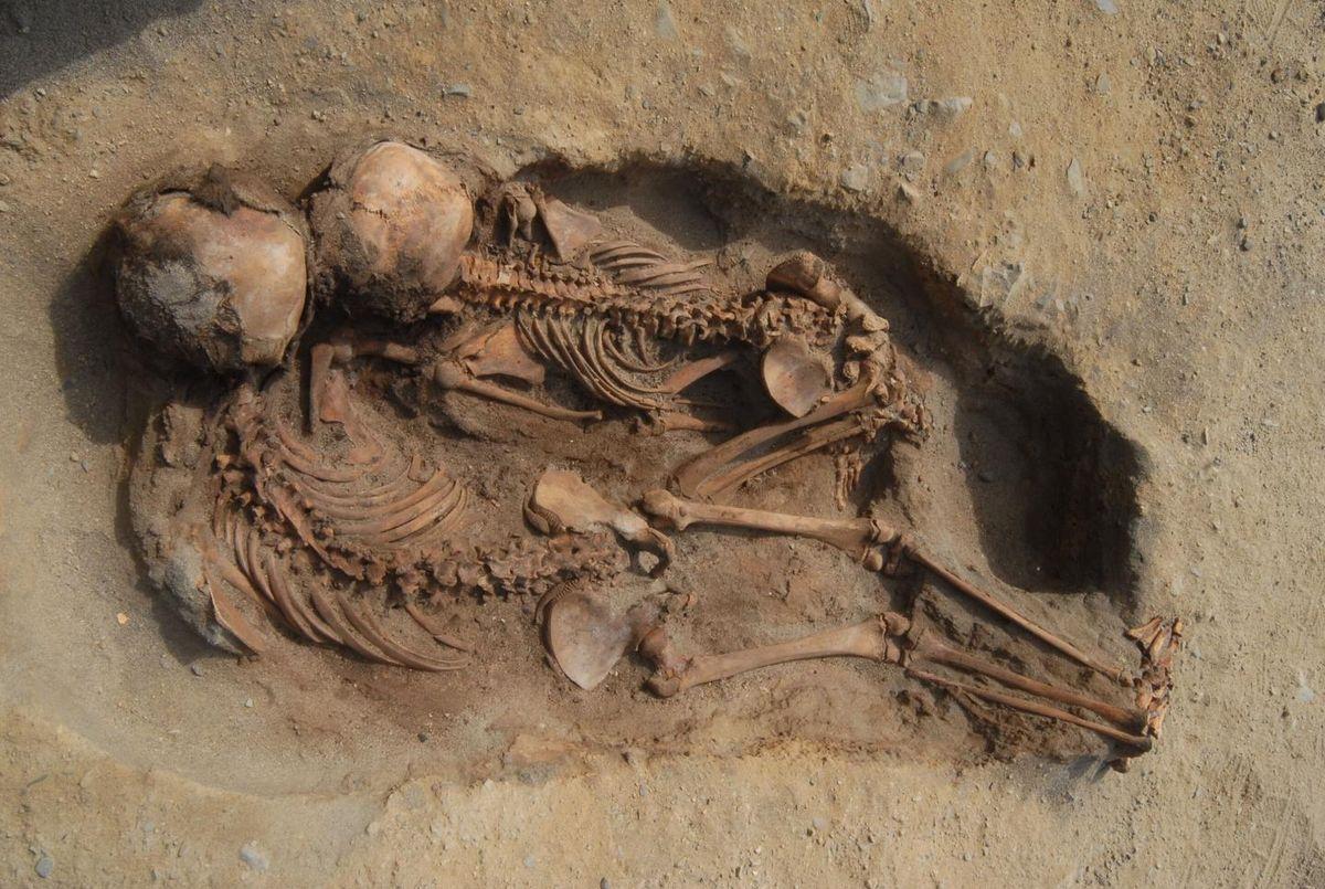 Des enfants momifiés dans un sacrifice au Pérou - Crédit : John Verano (2019)
