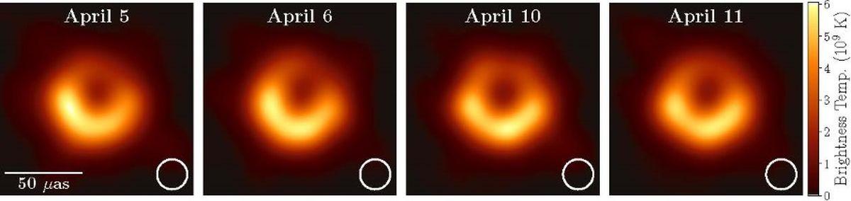 Sur 4 nuits d'observation différentes. Dans chaque cadre, le cercle blanc indique la résolution de l'EHT. Les quatre images sont dominées par un anneau lumineux à émission améliorée au sud - Crédit : Extrait d'un des papiers (le 4e) sur la découverte (Figure 15)