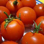 En cartographiant le pangénome de la tomate, les chercheurs ont découvert des gènes qui pourraient améliorer sa saveur dans le futur.