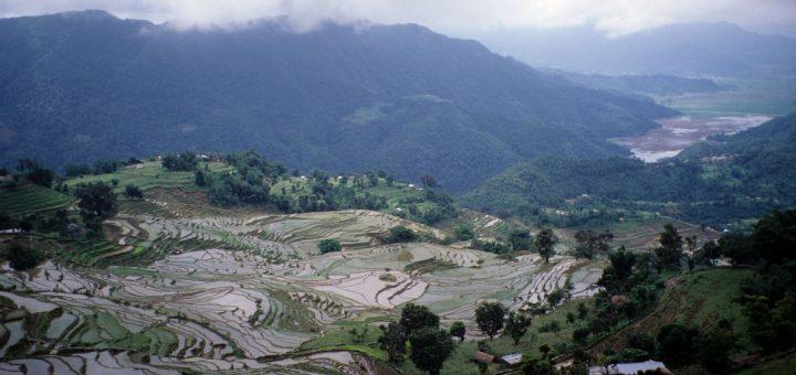 Les gens modifient la Terre, comme dans ces rizières en terrasses près de Pokhara, au Népal, depuis des millénaires - Crédit : Erle C. Ellis, CC BY-ND