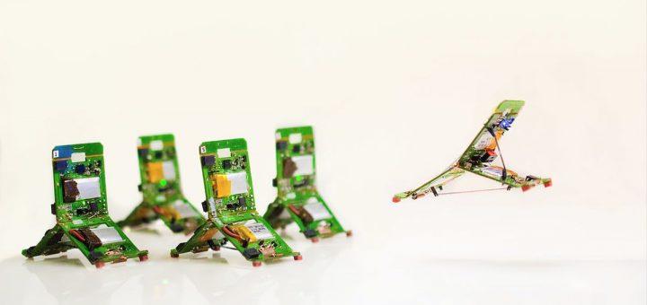 Les robots de type Terminator et Transformers sont les plus courants dans notre imaginaire collectif. Mais leurs tâches sont limitées par notre technologie actuelle. Les Robogamis, qui s'inspirent des origamis, sont plus prometteurs avec une polyvalence bien plus importante.
