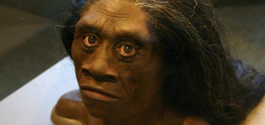 Après la découverte d'Homo floresiensis, on a tenté de faire un lien avec une créature de légende, appelée Ebu Gogo. Mais parfois, les légendes restent fictifs, même si elles peuvent apporter des éléments de réponse à la science.