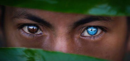 La tribu indonésienne Buton possède des yeux bleus électriques intenses à cause d'une maladie génétique appelé syndrome de Waardenburg.