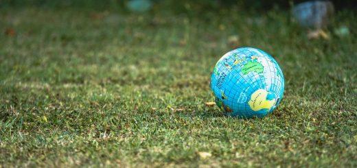 Quelques gestes simples à effectuer au quotidien pour préserver l'environnement.