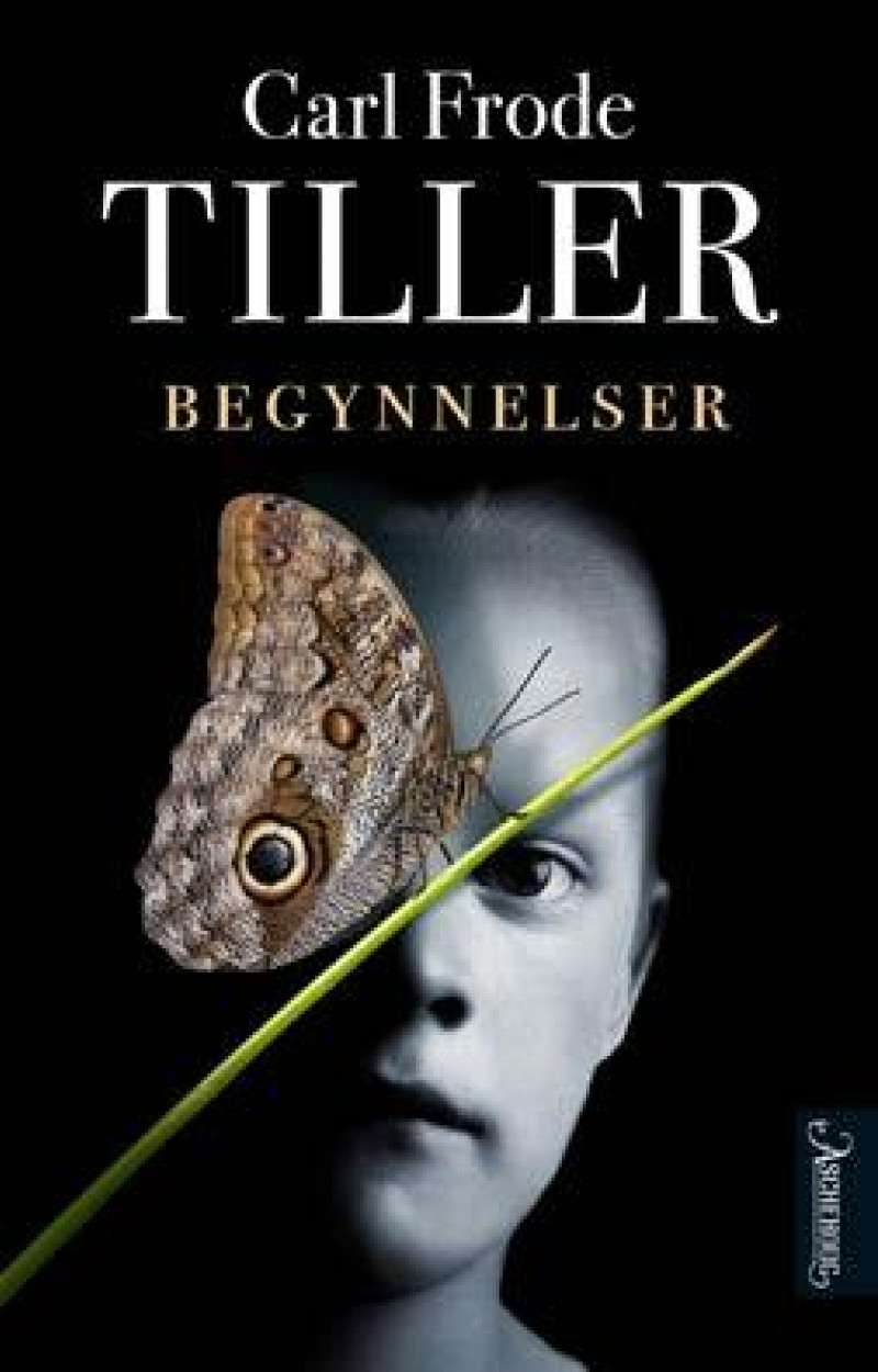 """Bilde av Carl Frode Tillers roman """"Begynnelser"""""""