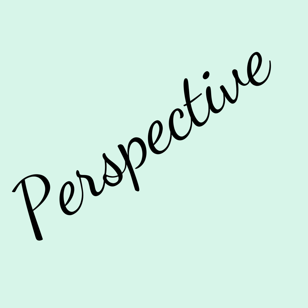 Perspective - The Shona Project