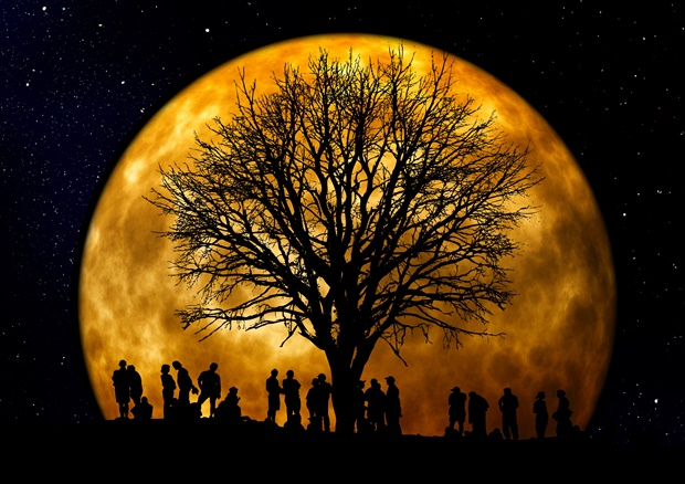 Canva-Silhouette-of-People-Standing-Neat-Tree-Under-the-Moon.jpg