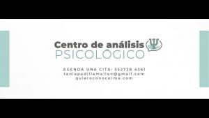 Psicoterapia. Tania Padilla Mallen