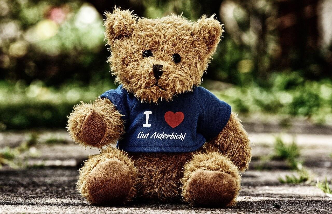 teddy-3698769_1280