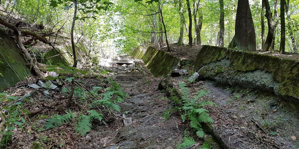 Krčský les 6