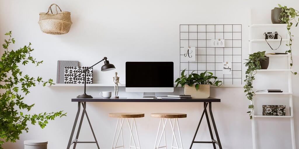 Kterými rostlinami obohatit svůj home-office_6