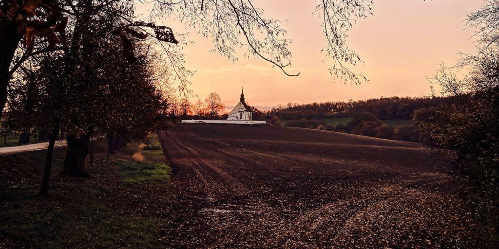 areál hradu Veveří