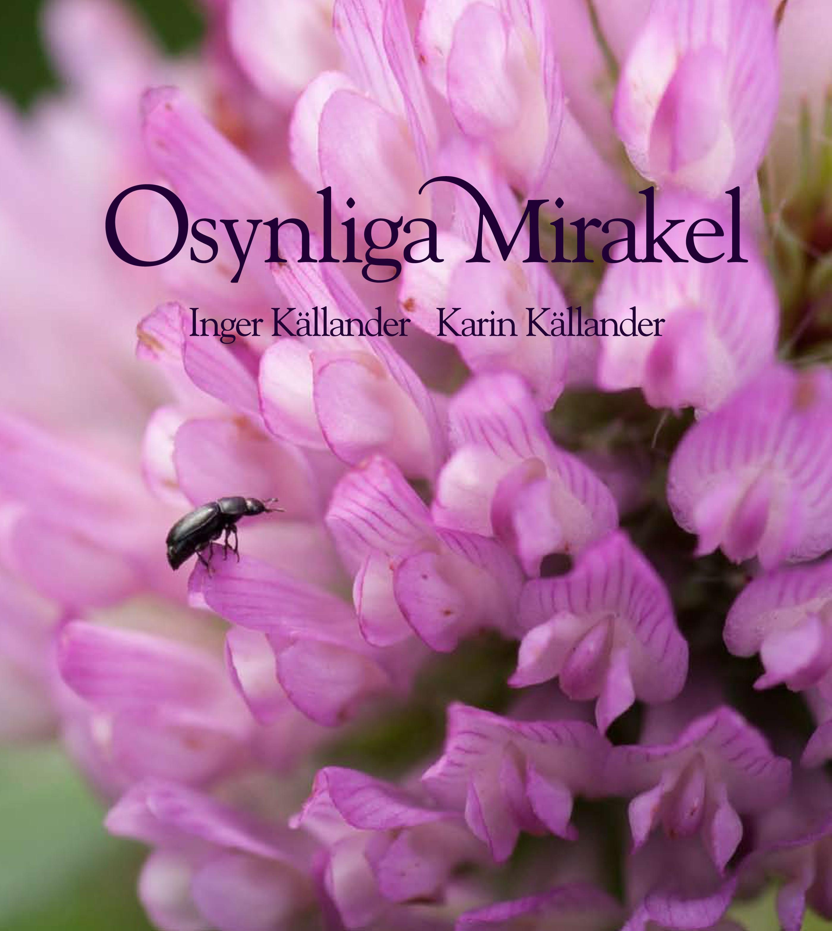 Omslagsbild av boken Osynliga Mirakel