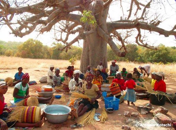 Korgflätande Kvinnor från SPB Uni Commerz i Ghana. Foto: Contigo Fair Trade /Kotschi