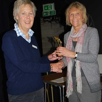 Judi Singer presents an award to a fellow RDA Volunteer