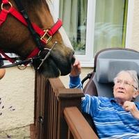 Abbotsleigh resident, Mabel, strokes Finn from Chalkdown RDA