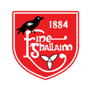 Fingallians GAA Club