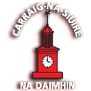 Carrick Davins GAA Club