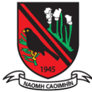 St Kevins GFC Kildare