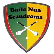 Newtownshandrum GAA & Camogie