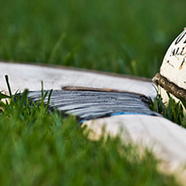 Hurling stock images