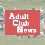 Adult 20club 20news