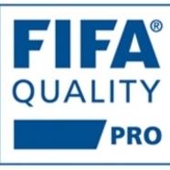 Fifa 20pro 20logo
