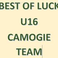 Camogie 20best 20of 20luck