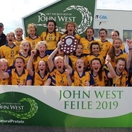All 20ireland 20feile 20small 20for 20clubify
