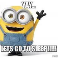 Sleeping 20minion