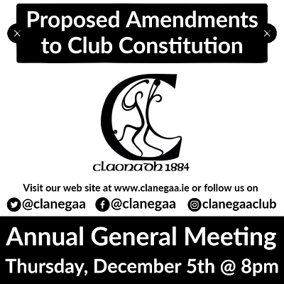 Club 20constitution
