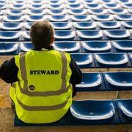 Steward 481x349
