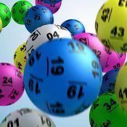 Lotto 204