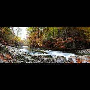 Panorama 7981 a 86 web