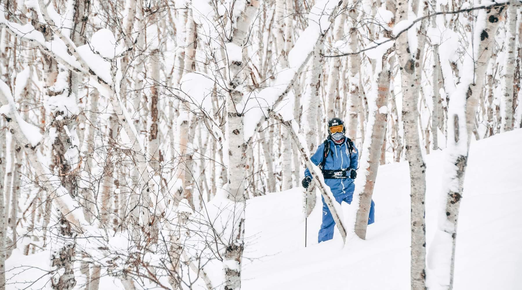 Japow - Powder Camp, Avalanche Briefing Sapporo, Hokkaido, Japan #aa4f1c1c-9777-49b3-aca6-e34f4b07988e
