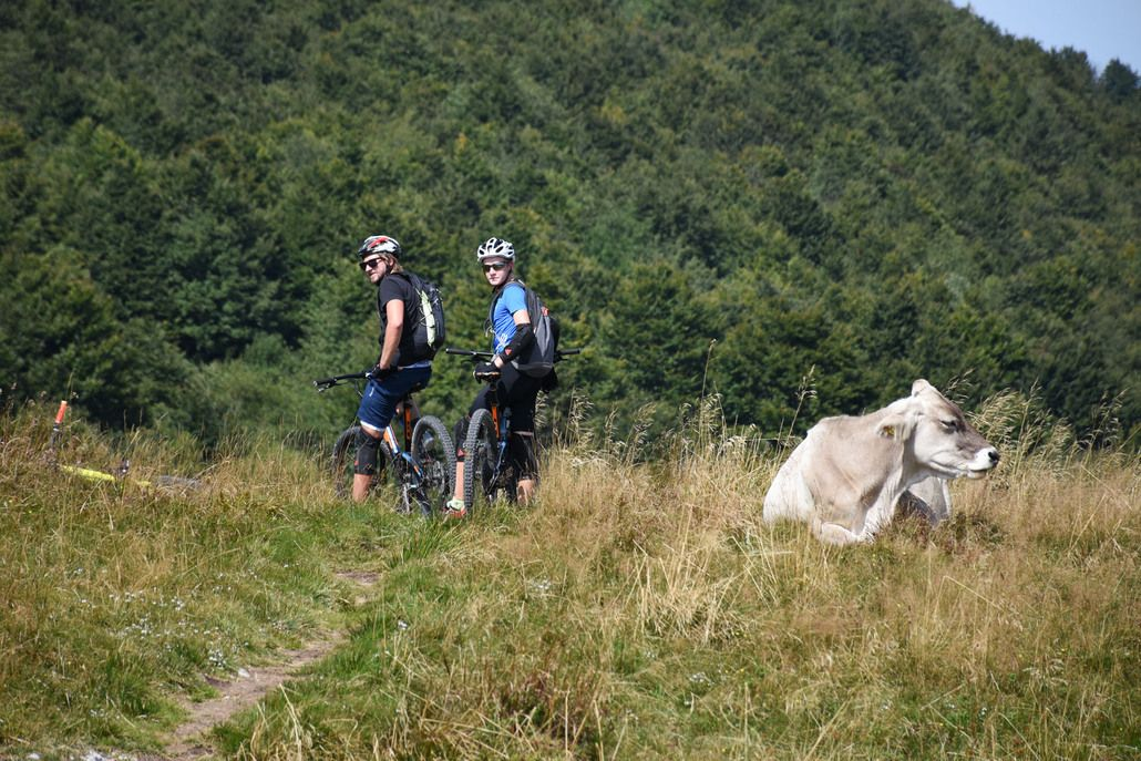 Kobarisky Stol Mountain Bike Tour Bovec, Triglav National Park, Slovenia