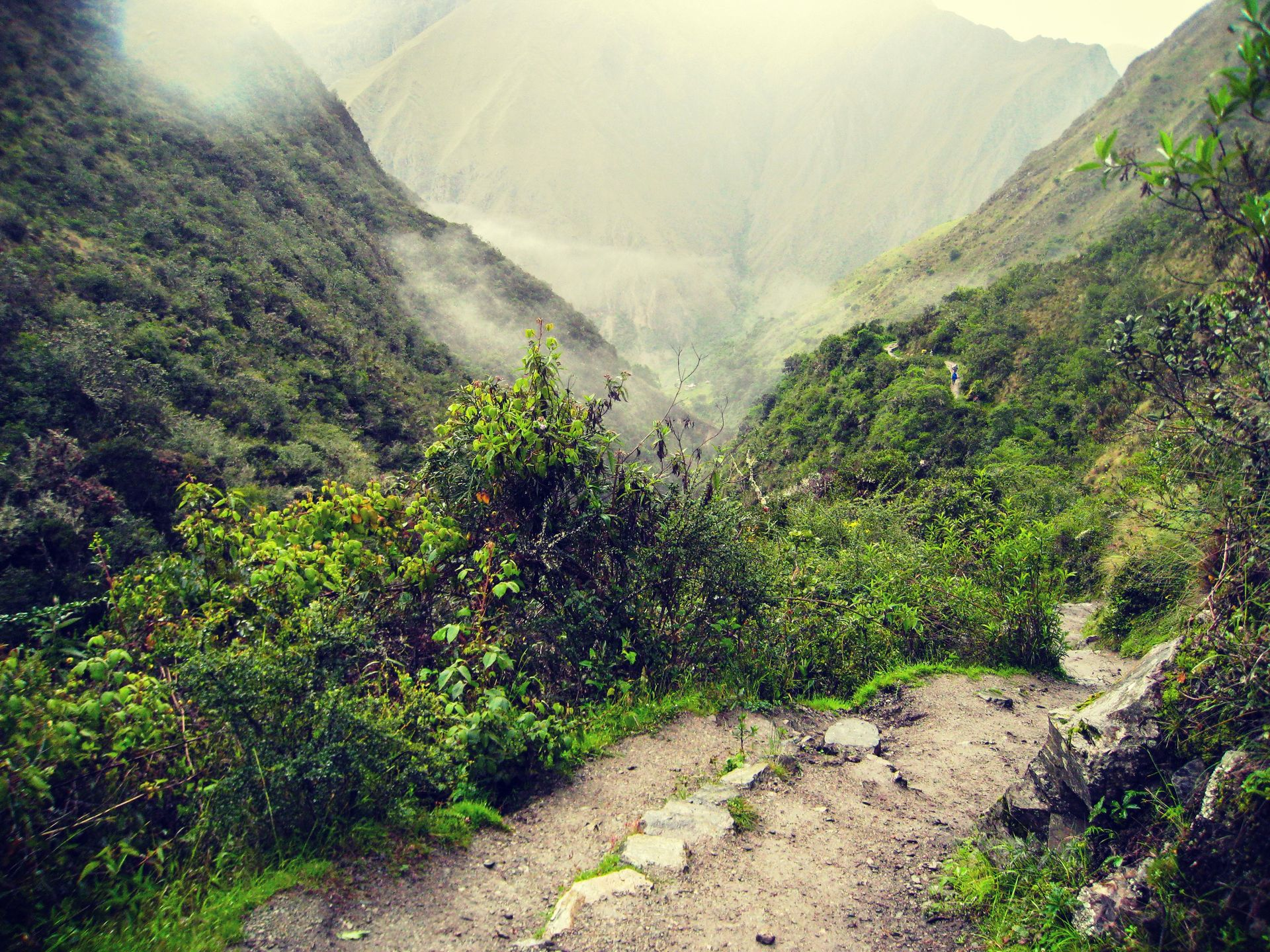 Inca Jungle and Rainbow Mountain Trek Inca Trail, Cusco, Lima, Peru #40cdd36d-f8b5-4482-90cd-9f1ac65d939f