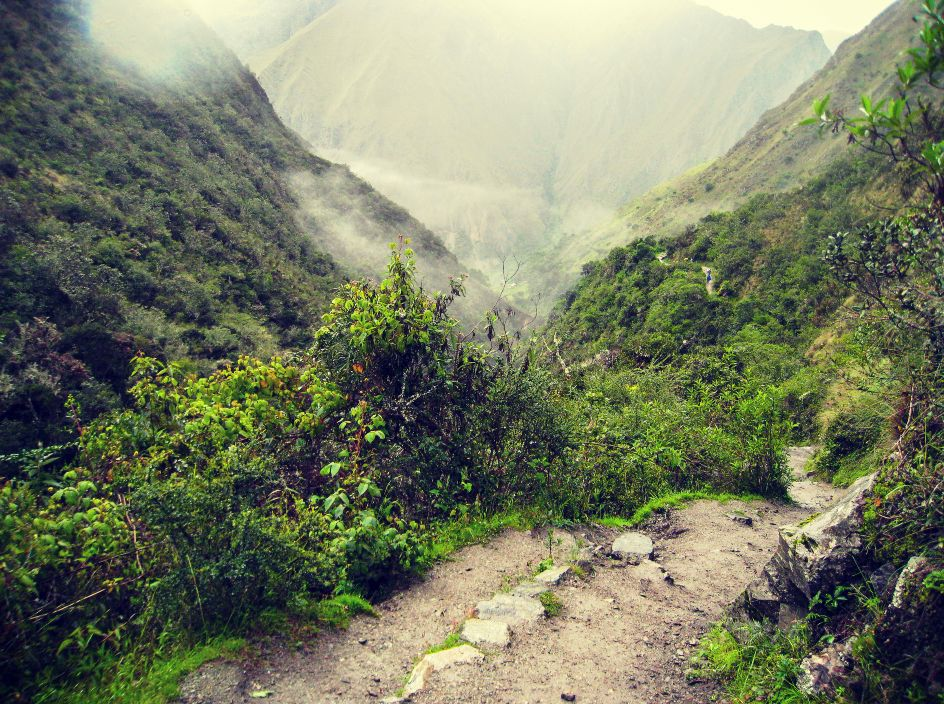 Amazon to the Andes Machu Picchu, Inca Trail, Lima, Peru #bb06c1e2-a6e0-4b14-837e-6b998500c38c