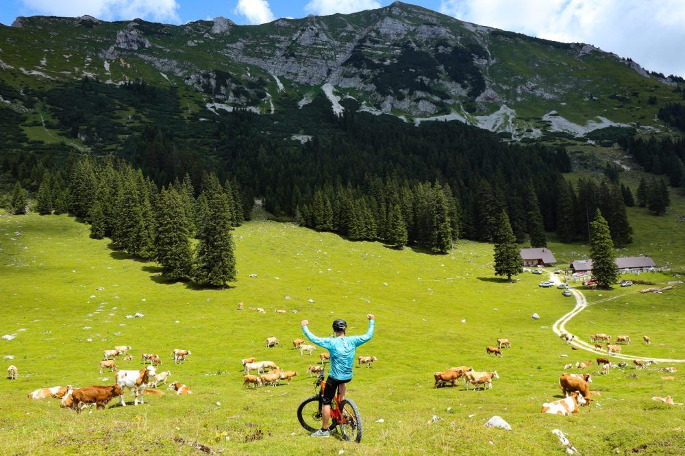 Cycling in The Mountain Pastures Gorjenska region, Slovenia #39ab39fb-067a-4152-891a-d22eda09d3fd