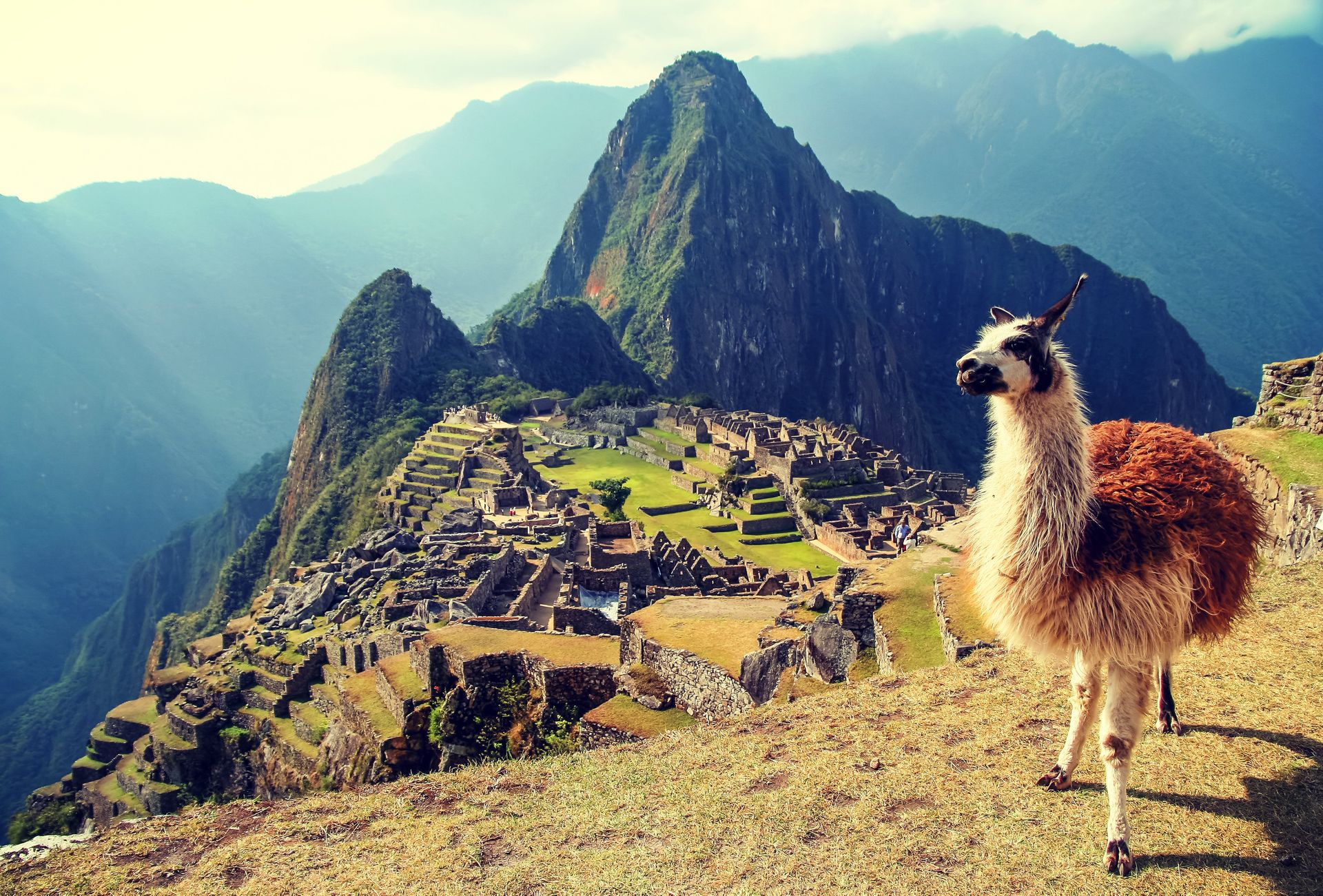 Inca Encounter Machu Picchu, Inca Trail, Peru #7bf53b40-2230-4778-a489-68eb6f3b8cc9