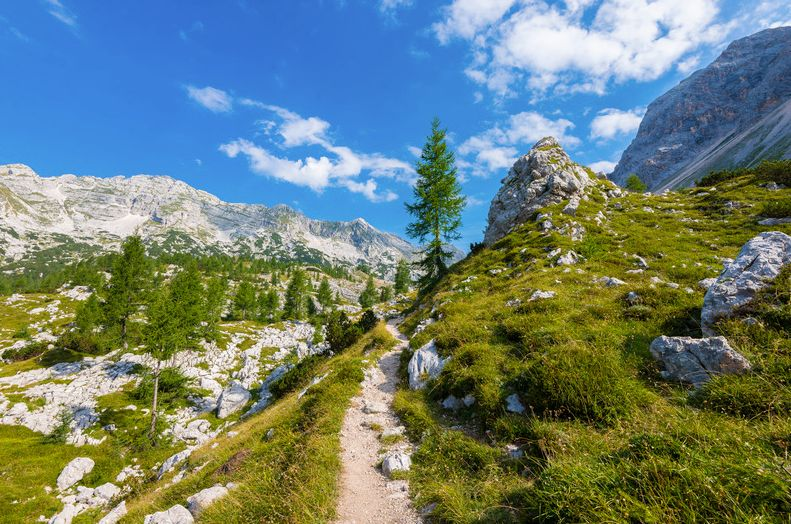 Multi-Day Hut to Hut Trek in Triglav National Park Triglav National Park, Slovenia #e5f59ced-d225-481e-af3f-ac7a2689ae5a