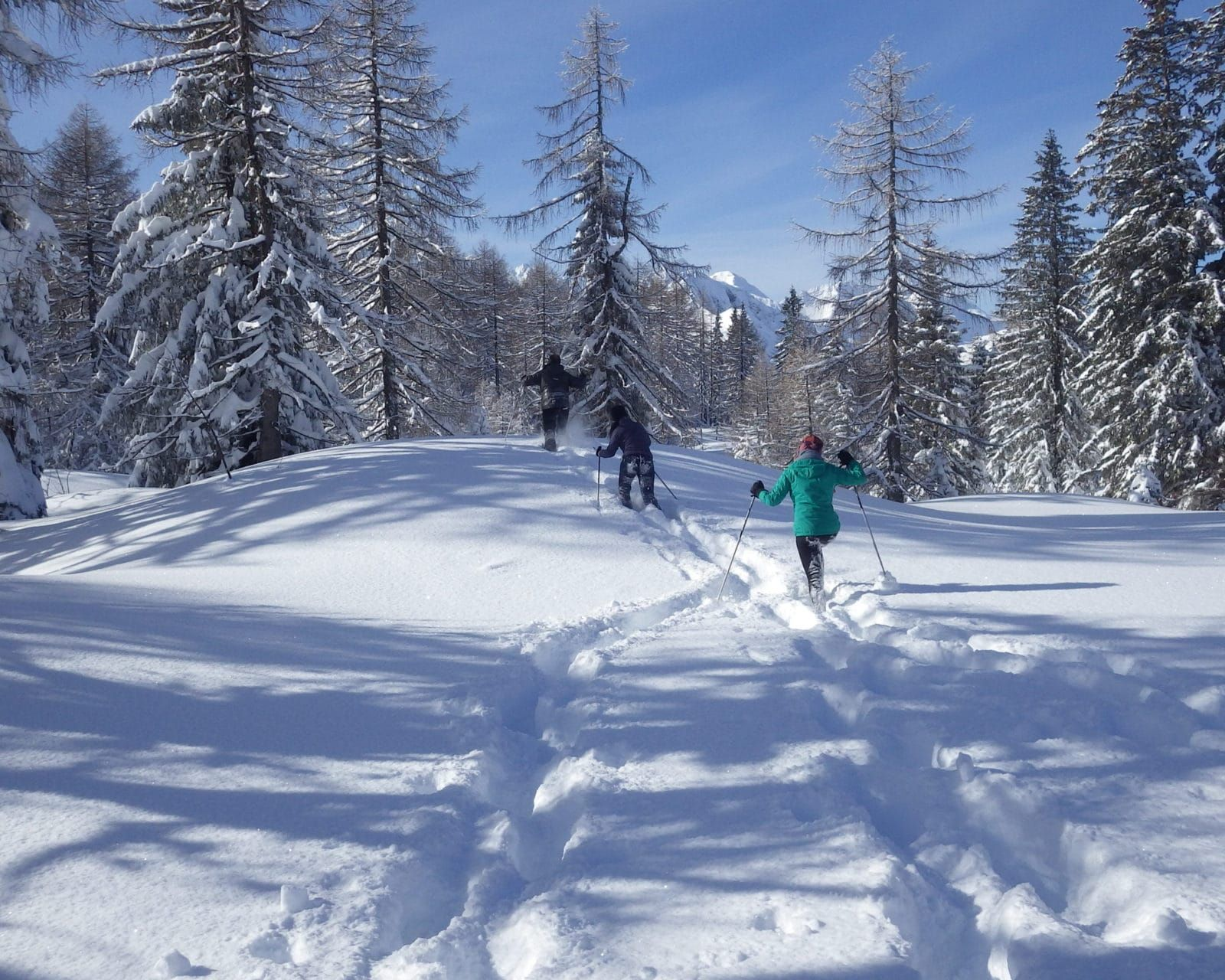 Explore Winter Triglav National Park Slovenia #035a3d59-7443-41e6-a73b-ce4e702f8f50