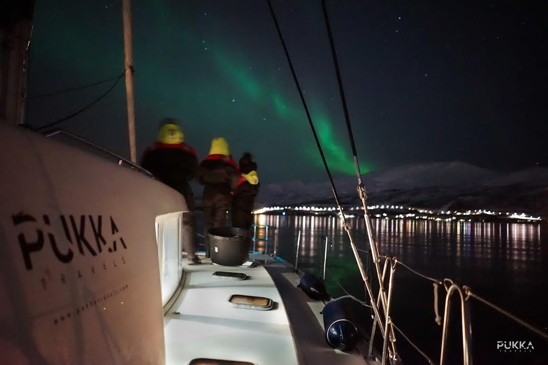 Private Northern Lights Sailing Tromso, Norway #bab7f395-e054-499e-b877-748daca23963