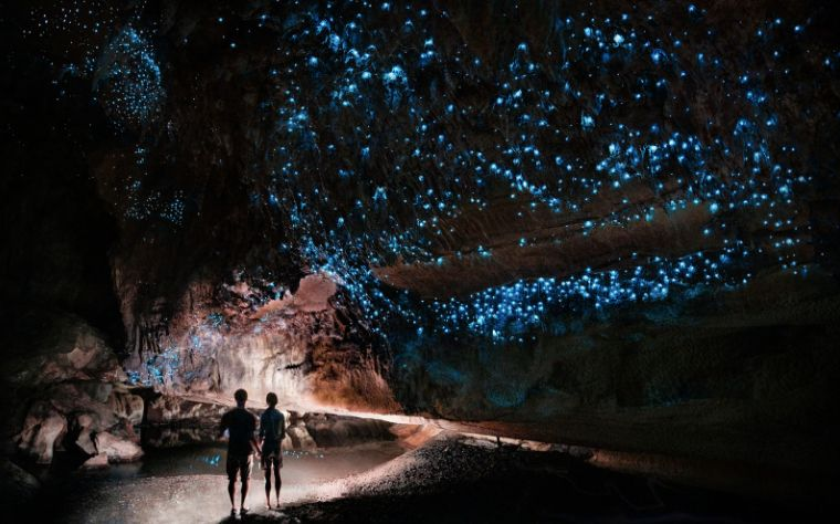 Glowing Adventures Cave Photography Tour Te Kuiti, Waimoto, New Zealand #dd7c4ec3-1a1d-4be4-92a3-2426bf61f460