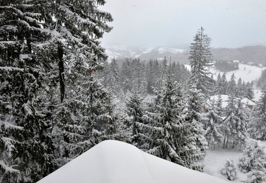 5 Days Ski Safari - 14 Ski Resorts Bled, Slovenia